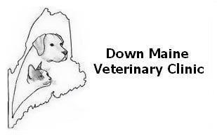 Down Maine Veterinary Clinic - Veterinarian In Sanford, ME