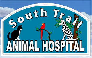 Home | Veterinarian in Fort Myers, FL | South Trail Animal