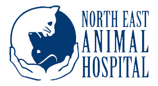 NEAH Logo