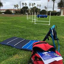 grass_agility_dogagility_dogagilityequipment