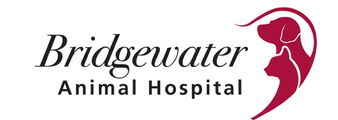 Bridgewater Animal Hospital
