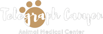 Telegraph Canyon Animal Medical Center