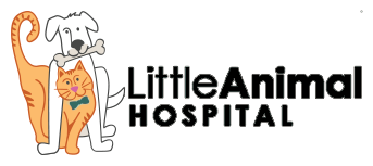 Little Animal Hospital