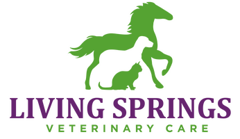 Living Springs Veterinary Care
