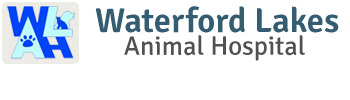Waterford Lakes Animal Hospital