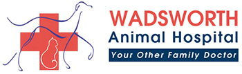 Wadsworth Animal Hospital