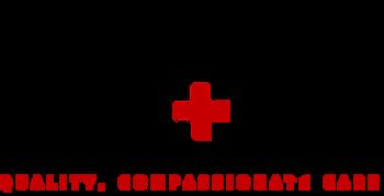 IIVC logo