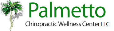 Palmetto Chiropractic Wellness Center, LLC