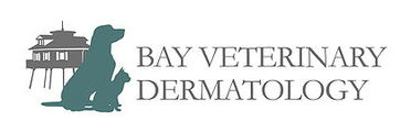 Bay Veterinary Dermatology