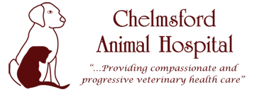Chelmsford Animal Hospital