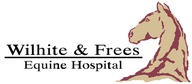 Wilhite and Frees Equine Hospital