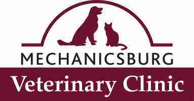 Mechanicsburg Logo