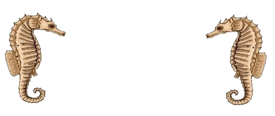 Equine Medicine Specialists of South Florida Logo