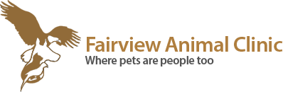 Fairview Animal Clinic