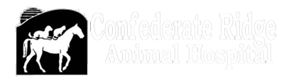 Confederate Ridge Logo