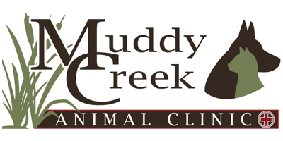 Muddy Creek Animal Clinic