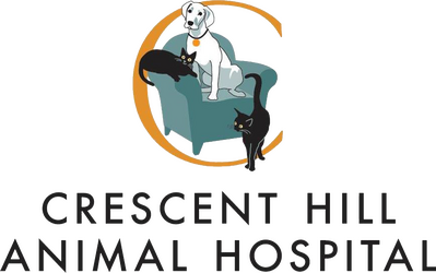 crescent hill animal hospital