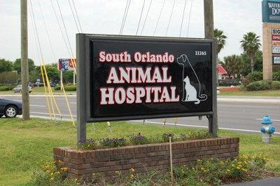 OUTH ORLANDO ANIMAL HOSPITAL