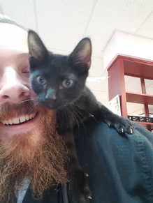 David & Kitten