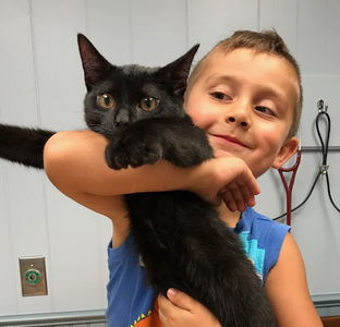 little boy with a black cat
