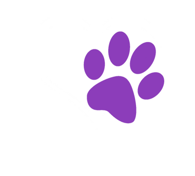 Best Friend Veterinary Hospital