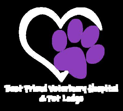 Best Friend Veterinary Hospital