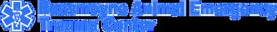 RAETC Logo