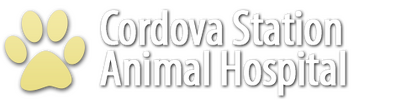 Cordova Station Animal Hospital Logo