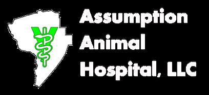Assumption Animal Hospital - Veterinarian in Paincourtville, LA