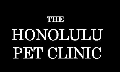 Pet Surgery | Honolulu | Veterinarian