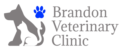 Brandon Veterinary Clinic