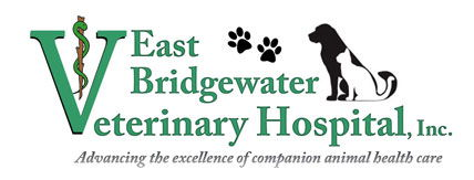 East Bridgewater Veterinary Hospital