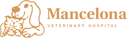 Mancelona Veterinary Hospital