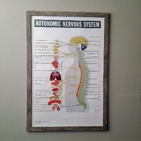 Advanced Chiro