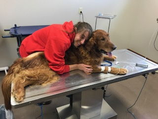 Chemo patient gets some TLC from April