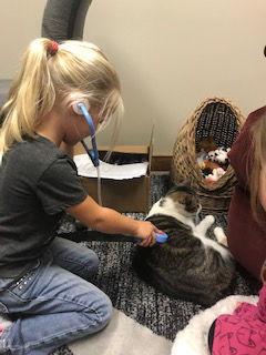 girl examining cat