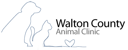 Walton County Animal Clinic