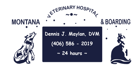 Monta Veterinary Hospital & Boarding