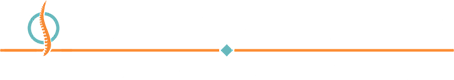 North Atlanta Spine Chiropractic Health & Wellness Logo
