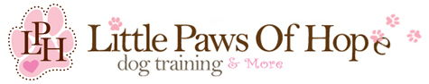 Dog Training, Daycare, Lodging & Spa