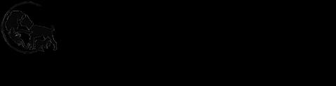 Birdneck Animal Hospital Logo