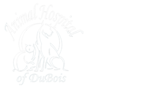 Animal Hospital of DuBois