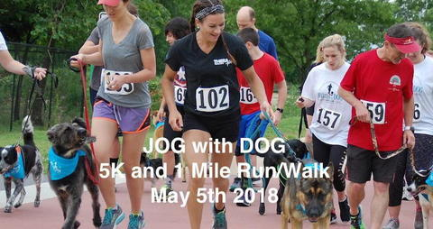 Jog with Dog