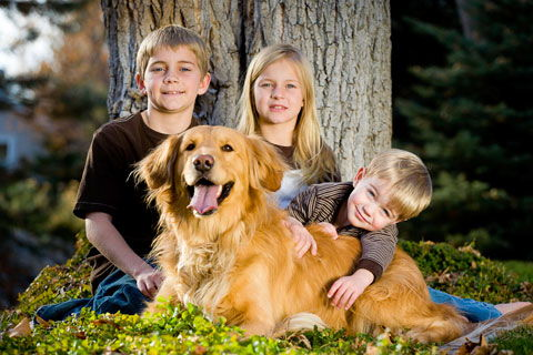 Double Diamond Veterinary Hospital - Veterinarian in Bozeman