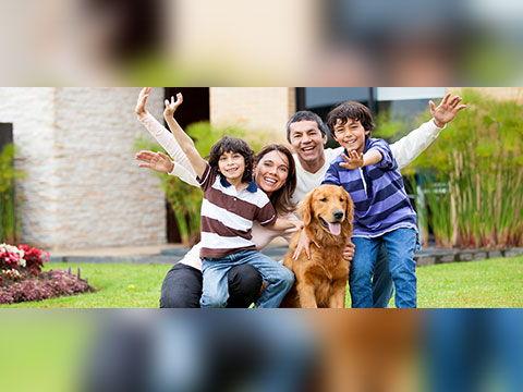Veterinary Clinic | Lancaster & Buffalo, NY | McClelland