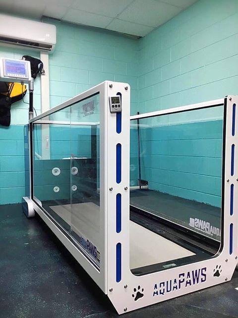 AquaPaws Underwater Treadmill