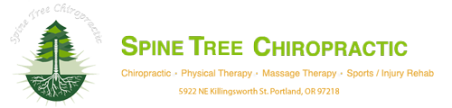 Spine Tree Chiropractic