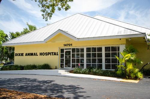 Dixie_Animal_Hospital_1