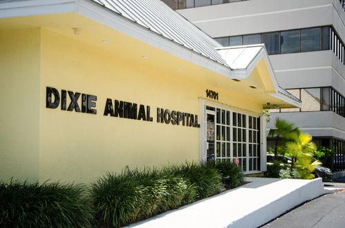 Dixie_Animal_Hospital_2