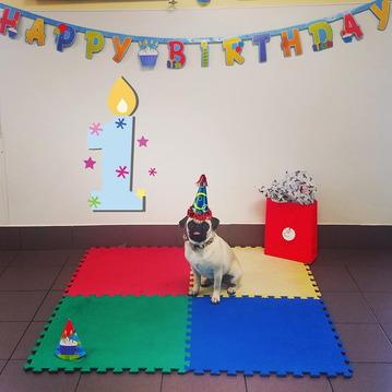 Daycare birthday